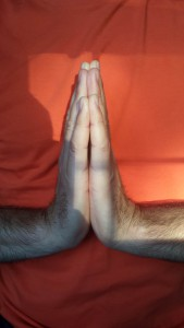 Hands in prayer position, called namaste